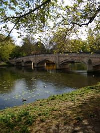 a bridge over a canal with over-hanging trees